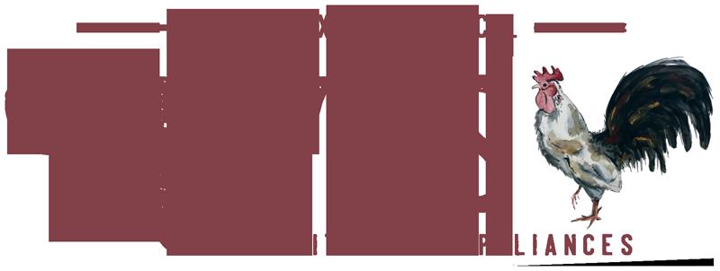 Alexander's Store | Blairsville, Georgia | Everything Under